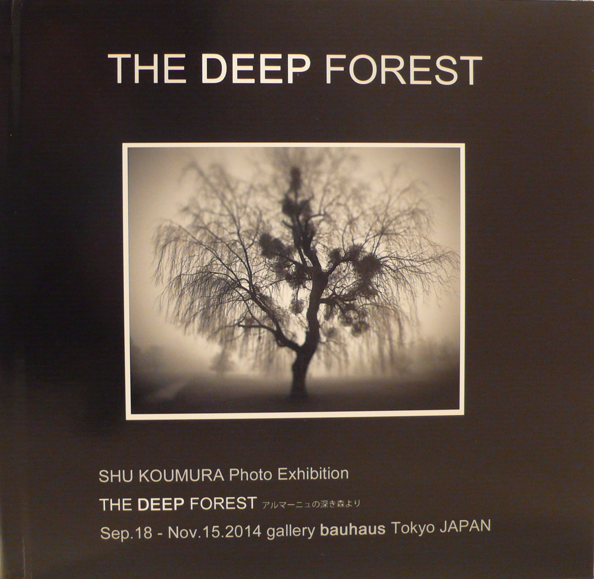 THE DEEP FOREST